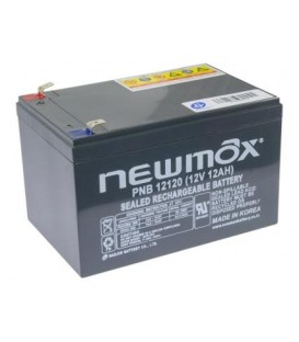 Newmax PNB 12120 AGM 10 Years Long Life Series 12V-12AH