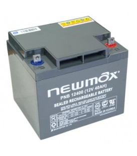 Newmax PNB 12400 AGM 10 Years Long Life Series 12V-40AH