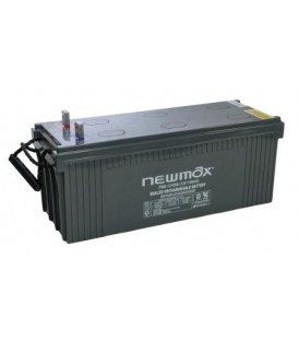 Newmax PNB 121000 AGM 10 Years Long Life Series 12V-100AH